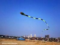 Animals big huge snakes - 2016 new3D meters Stunt huge SNAKE POWER Sport Kite outdoor toy