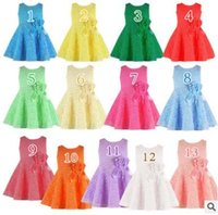 Wholesale New Princess Flower Girl Dresses For Wedding Patry Brand Rose Lace Tutus Little Baby Girls Dress White Children s Clothing