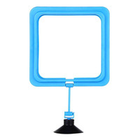 Wholesale Fish Tank Square Ring plastic Feeder Station Floating Food