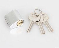 Wholesale Fire door core Fire door locked short brass lock core Wells General type open lock