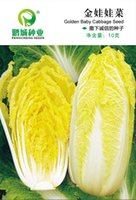 baby industry - PengCheng seed industry Baby don t cry vegetables seeds Gold cabbage Package the ball fast bolting resistance grams bag