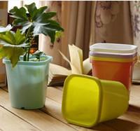 Wholesale pots square plastic colored pots tray mini plants color plastic small flower pot
