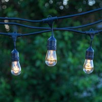 ambience lights - Brightech Ambience Pro Outdoor Weatherproof Commercial String Lights with Hanging Sockets WeatherTite Technology S14 Incadescent Bulbs