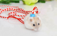 Wholesale Random Color Pet Rat Mouse Harness Adjustable Rope Ferret Hamster Finder Bell Leash Lead CM for Guinea pig Squirrel Hamster Mouse