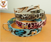 beautiful tiger tattoos - Beautiful high grade imitation leather collar tiger tattoo stainless steel bone pattern pet dog collar mixture