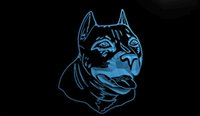 american pits - LS645 b American Pit bull Dog Terrier Neon Light Sign jpg