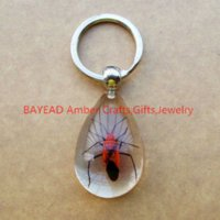amber keyring - Real Red Bug Clear Resin Keychains Drop Shape M Size mm Insect Amber Resin Keychain Bug Keyring