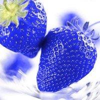 Cheap growing plants seeds Best Fruits seeds
