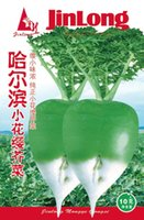 best vegetable gardens - Original Packaging g mustard Seed pickled vegetables Best Garden Plants Vegetable Seeds