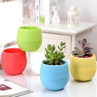 Wholesale 3pcs Mini Rainbow Stone Plastic Flower Pot succulents Home Garden Office desk Decor Planter flowerpot garden supplies