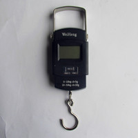 axles truck - Portable electronic scale for electronic scale of fishing scale