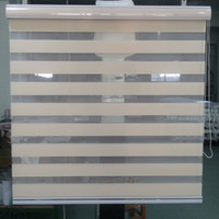 Wholesale Hot Sale Translucent Roller Zebra Blinds in Peach Color Custom Size Curtains for Living Room Colors are Available GY01