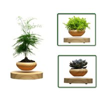 air suspension products - Very new high tech product air bonsai no plant Suspension flower pot pottedplant levitate tubs free shiping