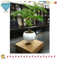 Wholesale 20 dhl free new designer decor magnetic floating Air layering levitating air bonsai plant bonsai