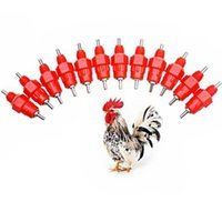 Wholesale 10 Water Cups Nipple Chicken Drinkers Waterer Angle Poultry Supplies