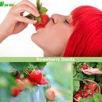 Wholesale Big Giant Red Fruit Strawberry Seeds Diy Garden Fruit Seeds Potted Plants Garden Supplies Bonsai Home