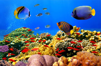animated effects - Custom large murals fabric wallpaper d wall paper sitting room bedroom TV sofa background Underwater world animated cartoon cute fish color