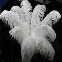 africa imports - South Africa Ostrich Feather Plume Centerpiece Imports Wedding Table Decoration Ostrich Feather Cm Diy Jewelry Materials