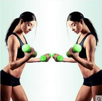 Wholesale One Pair Body Building Fashion Aerobics Fitness Dip dumbbell female small colored Bone shape