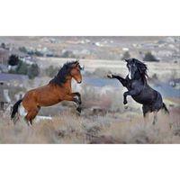 antique horse paintings - Two horses DIY Diamond Paintings Cross Stitch Resin Needlework Home Decoration Rhinestone Mosaic Diamond x30cm HWB