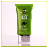 Wholesale Hot Snail BB Cream Cactus Green Tea Pearl BB Cream g Concealer Isolation