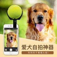 Wholesale New Pooch Dog Selfie With A Ball Attract Pet Dog Toys Handheld Stick For mobile Tennis Ball Toy pet selfie