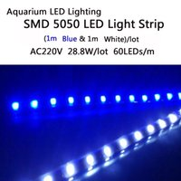 aquatic plants for aquariums - m Blue amp m White Aquarium LED Lighting SMD LED Light Strip V W For Aquatic Plants Grow In The Fish Tank