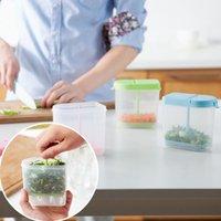Wholesale Useful set Chopped Green Onion Organizer Container Kitchen Tools Foods Storage Box Crisper Plastic Refrigerator Storage