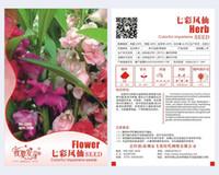 balsam color - Flower Garden Balsam Seeds Original Package Mix color Garden bonsai Flower seeds Easy Grow Impatiens bags per