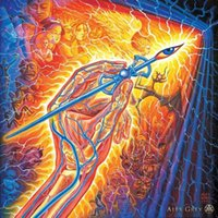 american surrealism - Alex Grey The Artist s Hand Surrealism canvas art print silk poster x24 quot