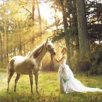 beauty mosaic - Beauty and the Horse Needlework cross stitch diamond mosaic gift diamond painting D diy Full diamond embroidery Home Decoration