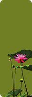 Wholesale DM Printed lotus Salutation Custom Sizes Various Colors Gymnastics Yoga Mat