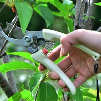 Wholesale Garden Scissors Tool Garden Trees Fruit Pruning Shears Flowers Trimmer Outdoors Branches Pruning Trimming Grafting Scissors Tool