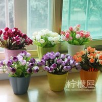 Wholesale The countryside flower flowers potted rose flowers small plastic circular Vase Set