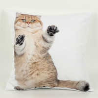Wholesale 45 cm Short haired Cat Cushion Cover Animal d side printing Decorative Throw Pillows Cover for Sofa Pillowcase