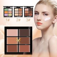 Wholesale High quality Paguma Huamianli color Concealer black eye cream acne lip primer DHL
