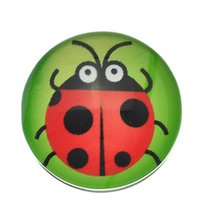 alternative diy - Glass scarab mm metal button snaps for leather fashion DIY round alloy alternative ginger snap jewelry