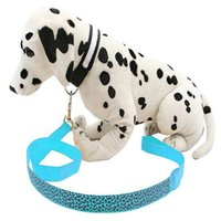 batteries dog leashes - Nylon Led Dog Leash Flashing Training Leashes for Dogs Waterproof Batteries Included Luminous Cat Collar Chain Harness Pet Products B