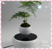 advertising gifts boxes - 10 new mangetic floating levitate air plant tree air bonsai for decor gift