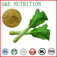 Wholesale Lettuce Leaf Extract Lettuce Leaf Powder Extract powder g