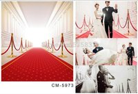 baby gallery - Photo BackdropsDigital Printing photography backdrops photo studio props baby Wedding background red carpet gallery