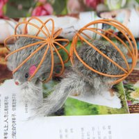 best rabbit cage - Funny cat toy in Rat paint ball cages False rabbit mouse prisoners mouse Kitten Play wire ball color random pet toys Best Gift