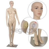 Wholesale Clothes Display Dressmaking Showcase Full Body Female Mannequin Retail Display