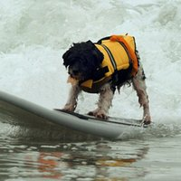 Wholesale High Quality Dog Life Jacket Breathable Pet Dog Puppy Swimwear Safety Clothing Adjustable Boating Life Vest Size XS XL JJ0118