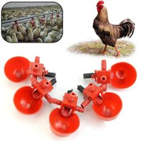 Wholesale 5Pcs Set Chicken Fowl Drinker Bird Coop Feed Automatic Poultry Water Drinking Cups