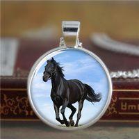 Collar del caballo 10pcs / lot, animal grande que aspecto hermoso con el collar negro de la joyería de la foto del vidrio del collar de la piel