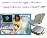 Wholesale Full Digital Veterinary Ultrasound EW C15V With MHz Linear Probe For The Equine Feline Canine