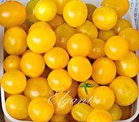 Wholesale 100 Yellow Cherry Tomato Non Gmo Vegetable Seeds Easy to Grow DIY Home Garden Bonsai Vegetable Enormous number of yellow bite sized fruits
