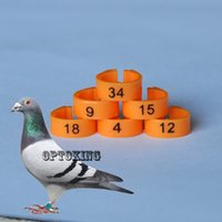 Wholesale retail plastic pigeon ring number from to pigeon band leg ring