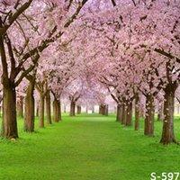 Precio de Vinil fondos de fotografía-5x7ft Árbol de Sakura Foto de estudio Fotografía Hierba